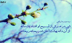 شعری زیبا از حمیدرضا برقعی در مورد حضرت فاطمه (س)