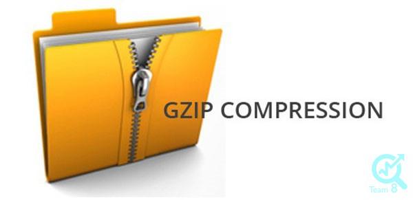 افزونه G zip compression