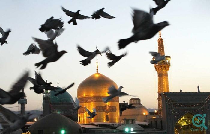 آیا امام هشتم شیعیان ( علی بن موسی الرضا علیه السلام ) را می شناسید؟
