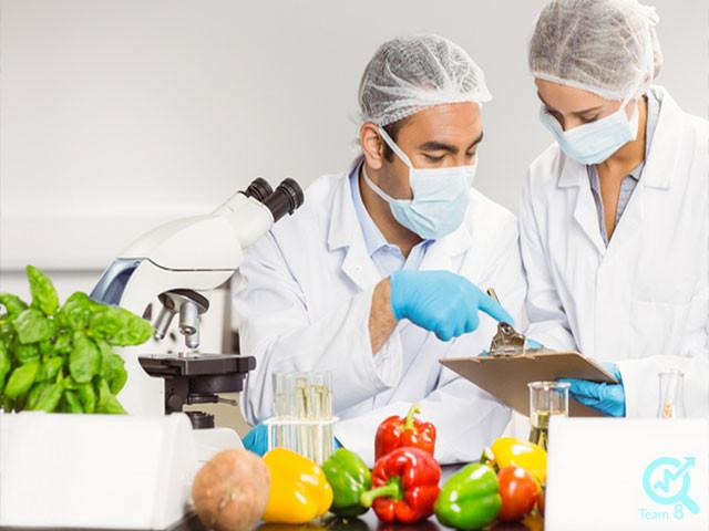 برند سازی برای سایت صنایع غذایی