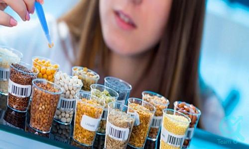 جذب مشتری از طریق سایت صنایع غذایی