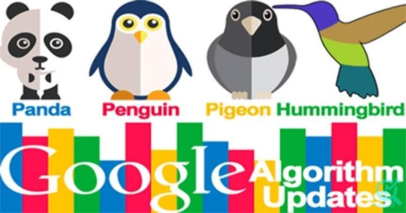 نام برخی از الگوریتم های گوگل چیست و با چه هدفی ایجاد شده اند؟