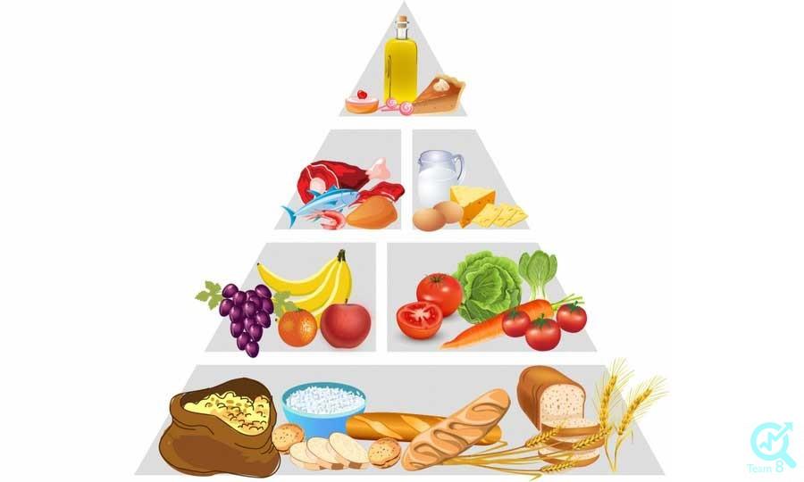 تولید محتوا برای سایت صنایع غذایی