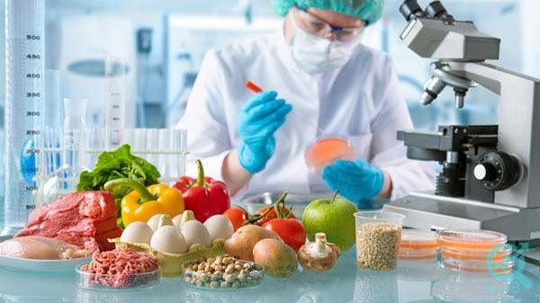 تولید محتوا در سایت صنایع غذایی