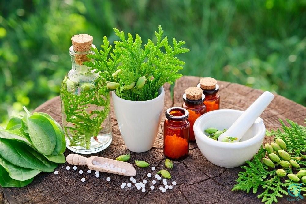 راهکار هایی برای تولید محتوای بهتر در زمینه داروهای گیاهی