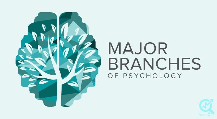 تولید محتوا برای روانشناسی فردی