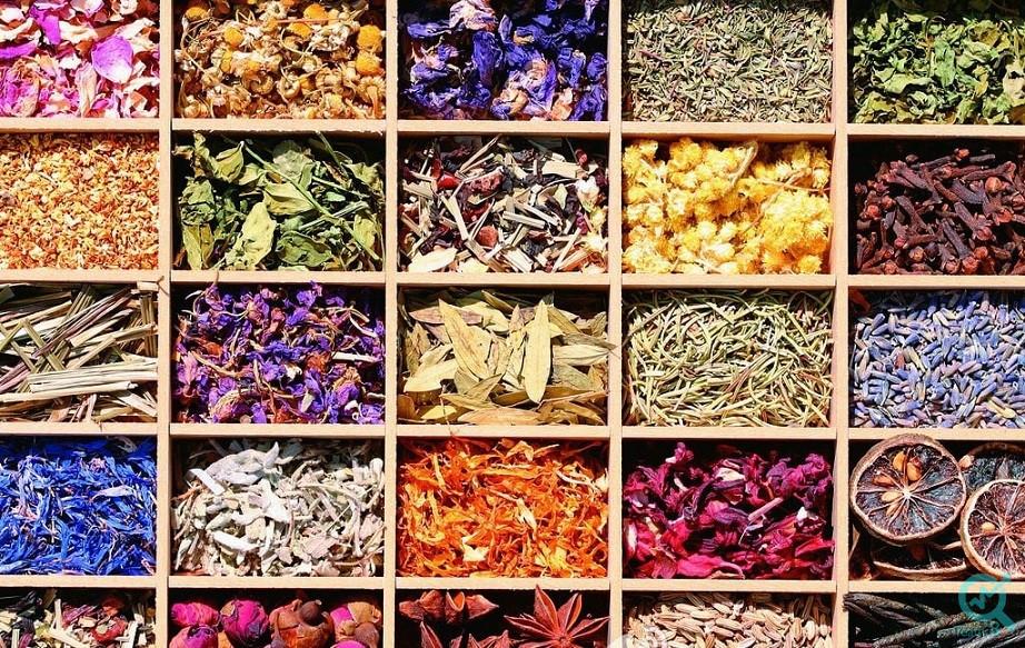 تولید محتوا در زمینه داروهای گیاهی