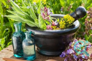 تولید محتوا برای سایت داروهای گیاهی