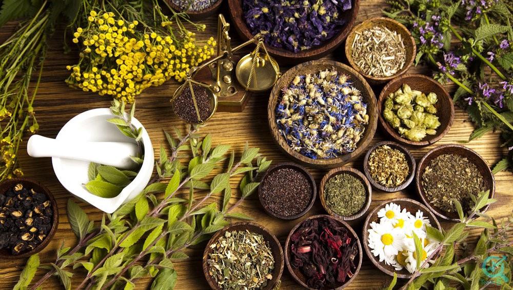 محتوای مناسب برای فروشندگان داروهای گیاهی