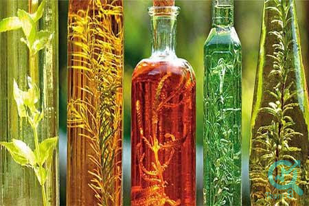 در زمینه ی تولید محتوا برای سایت گیاهان دارویی، اهمیت به محتوای تولید شده تا چه حد حائز اهمیت می باشد ؟